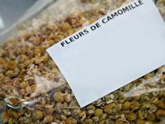Fleurs de Camomille séchées