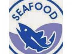 Poissons surgelés Maroc : Sardines, Sardinella Aurita, Maquereau de l'Atlantique, Bonite, Poulpe