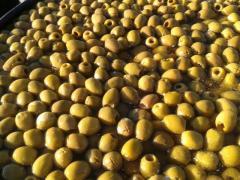 Olives verte dénoyautée  BELDI