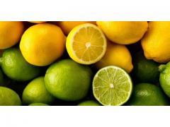 Citron de très bonne qualité origine Maroc