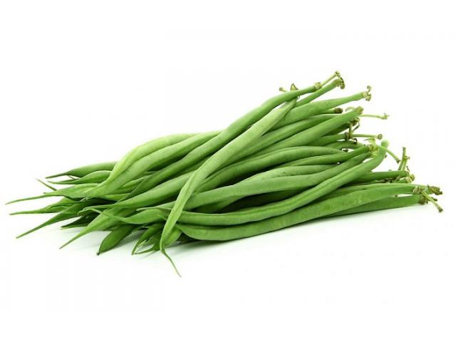 Haricots verts de bonne qualité origine Maroc