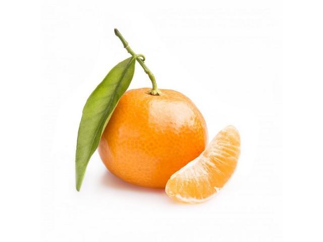 Marocaine Mandarine Nova