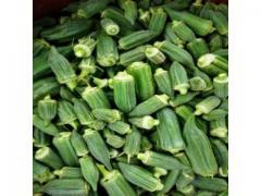 Gombo frais d'origine Marocaine