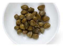 Les câpres de bonne qualité origine Maroc.